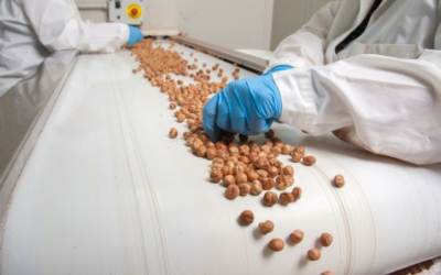 What is the Benefit of Using a Conveyor System in the Food Industry?