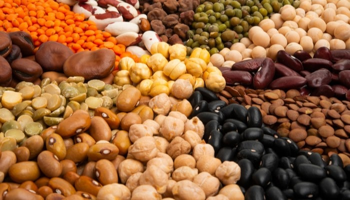 A Guide on the Distribution and Processing of Dried Beans