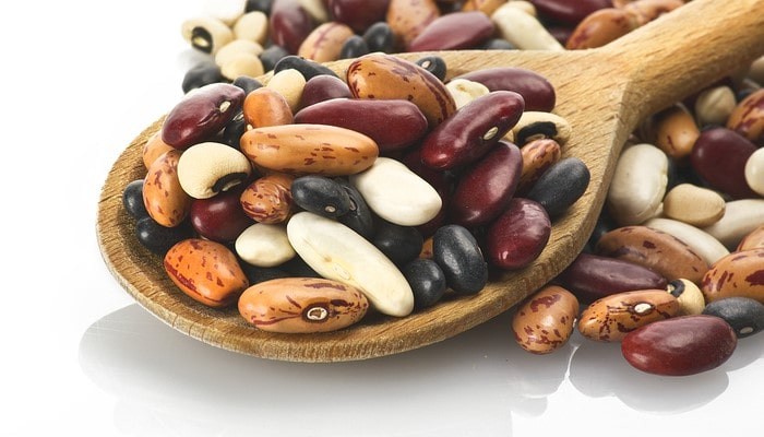 History of Dried Beans – How It All Started