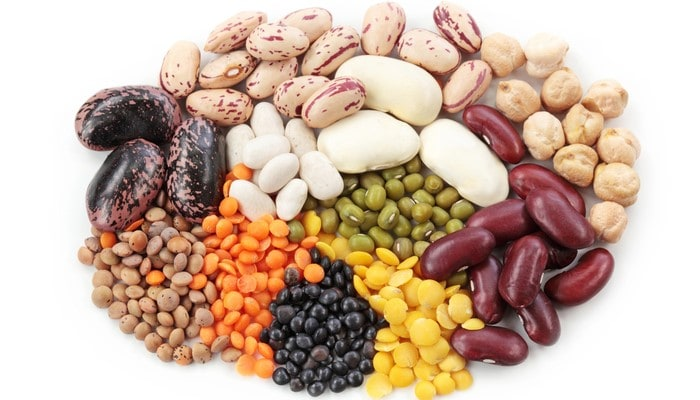 How to Maintain Quality in Dried Bean Processing and Distribution
