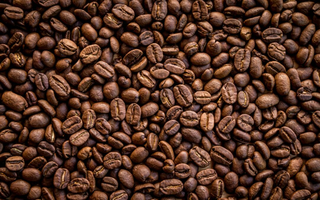 The Evolution of the Coffee Bean Industry