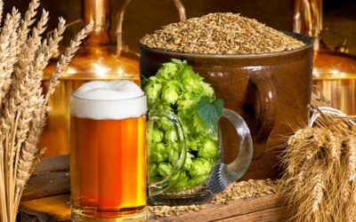 How Beer Brewing Has Evolved