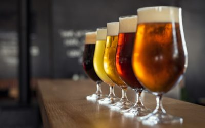 The Complete Guide on How to Brew Beer Better