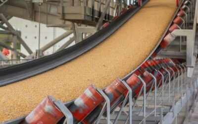 What Is A Grain Conveyor?
