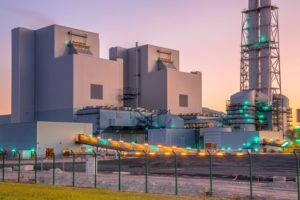 A Complete Guide on the Biomass Energy Industry