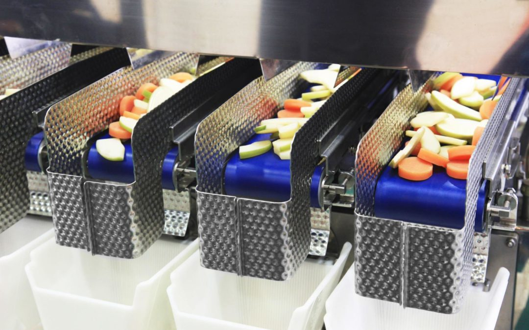 The Complete Guide to Sanitary Conveyors in Food Processing